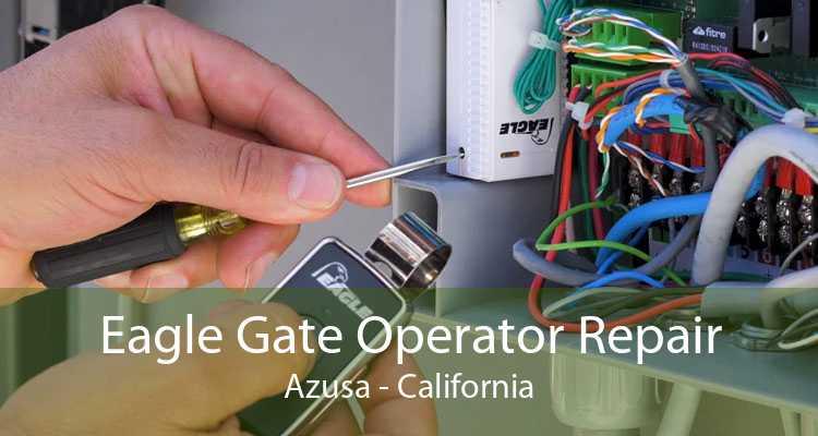 Eagle Gate Operator Repair Azusa - California